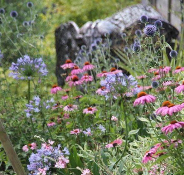 Réalisation de jardins paysagers : fleurs, gazon