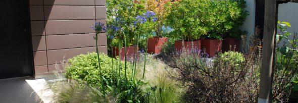 Jardin intemporel pour maison contemporaine