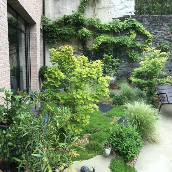 Aménagement jardin de ville, plantes, ardoises, glycine