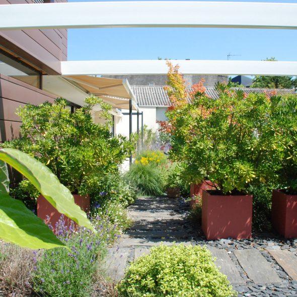 aménagement paysager allées, arbres et arbustes