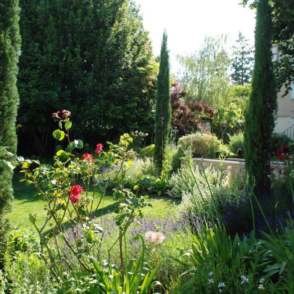 aménagement de jardin, cyprès, rosiers