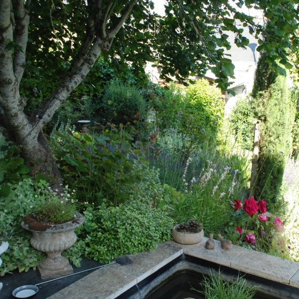 bassin de pierre, bordure végétale
